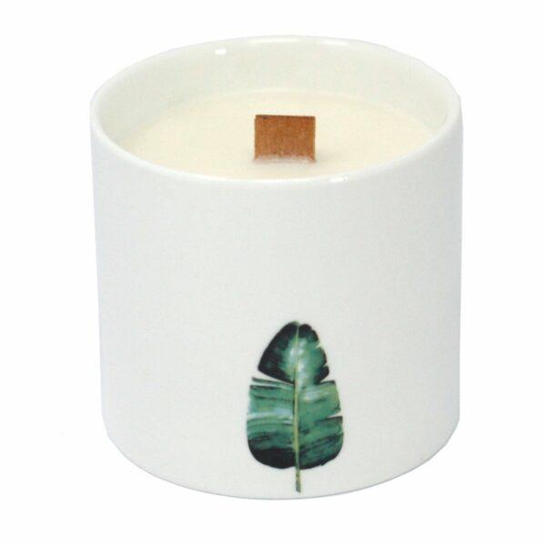 """Aromaterapinė žvakė iš sojų vaško """"Laukinis jazminas"""""""